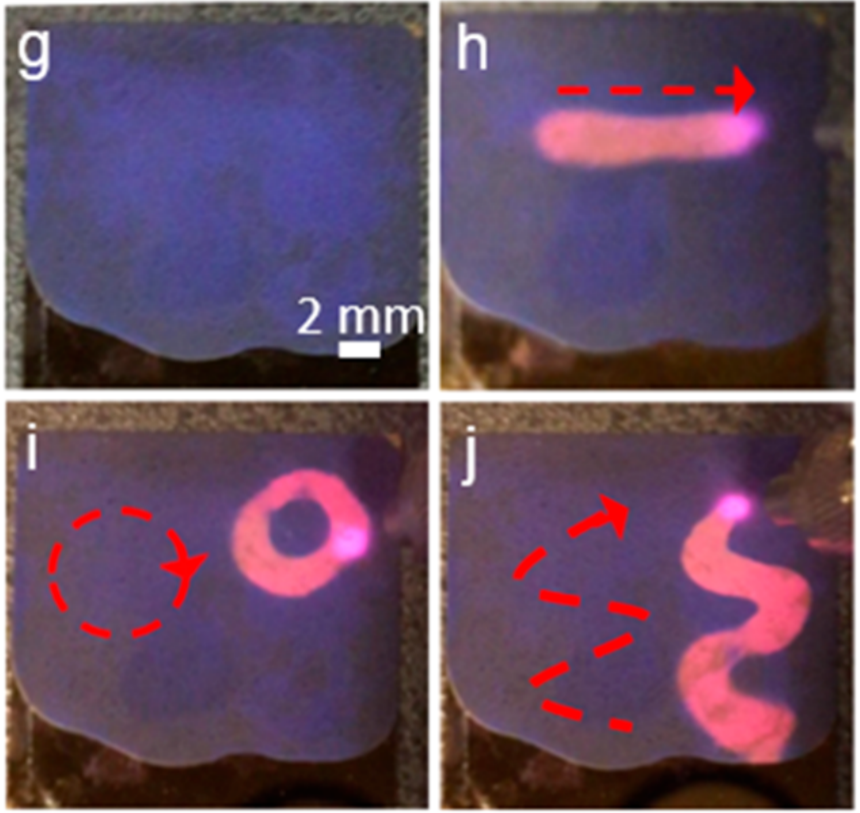 Designing Strong Optical Absorbers via Continuous Tuning of Interparticle Interaction in Colloidal Gold Nanocrystal Assemblies