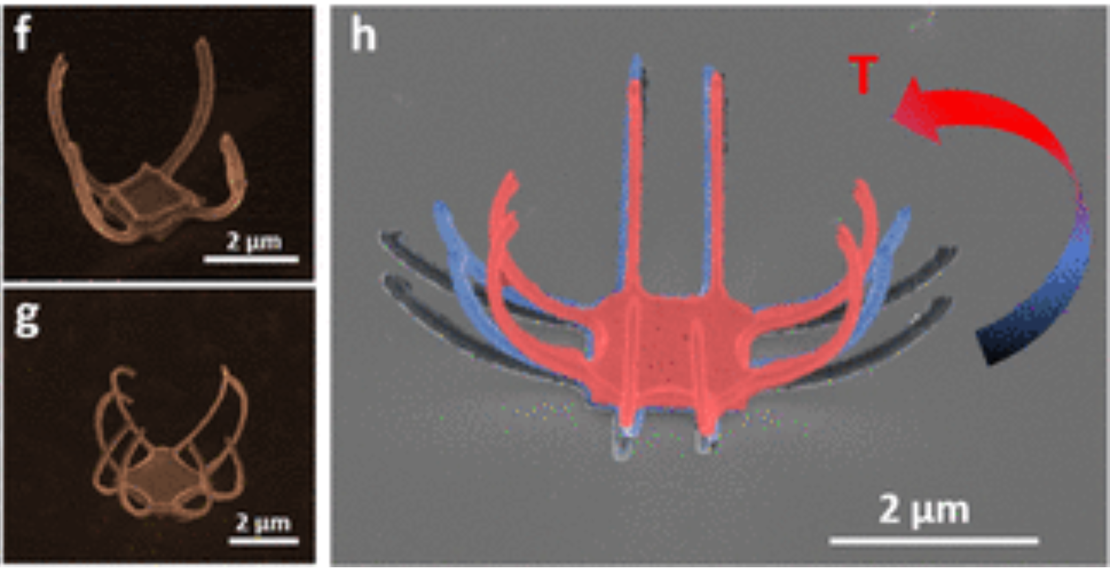 Chemo- and Thermomechanically Configurable 3D Optical Metamaterials Constructed from Colloidal Nanocrystal Assemblies