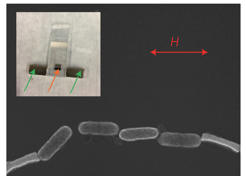 High-strength magnetically switchable plasmonic nanorods assembled from a binary nanocrystal mixture