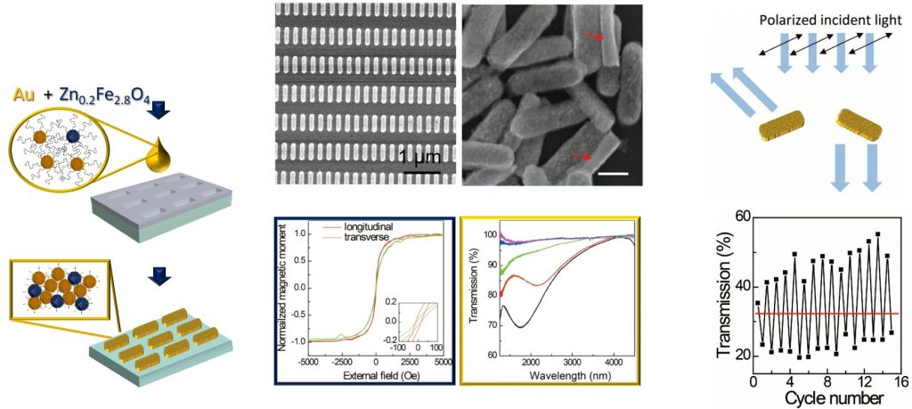 mixed superparamagnetic plasmonic superparticles
